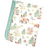 Honey Lemonade - Premium Soft Plush Lightweight Minky Dot Toddler Baby Newborn Blanket 30'x40' (Forest Friends Green)