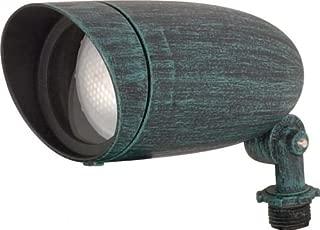 Nuvo Lighting SF76/656 One Light PAR20 120 Volt Die Cast Aluminum Durable Outdoor Landscape Security Lighting Flood, Antique Verdi Color: Antique Verdi Style: PAR20 Flood Light Model: 76/656