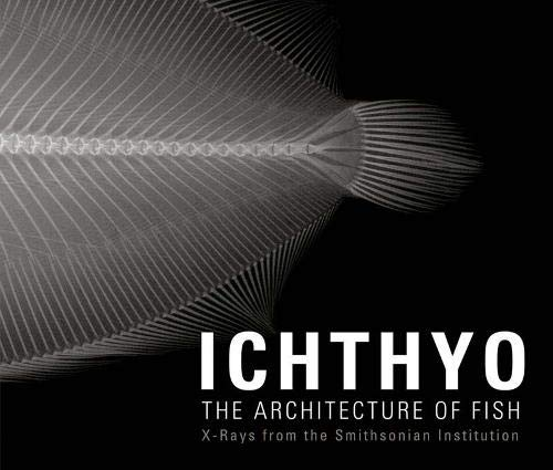 Ichthyo: The Architecture of Fish: The Architecture of Fish: X-Rays from the Smithsonian Institution