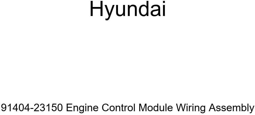 Genuine Hyundai 91404-23150 Surprise price Engine gift Wiring Assembl Module Control