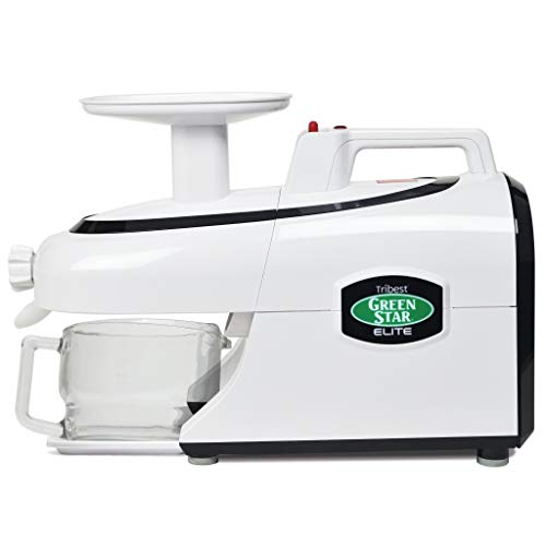 Tribest GSE-5000 Cold Press Complete Masticating Slow Juicer, Jumbo,...