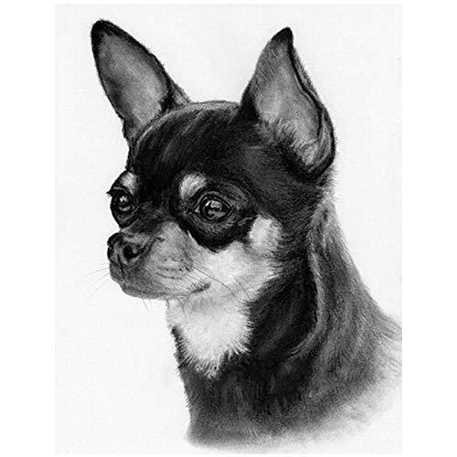 Cuadros Diamantes 5D - Perro Chihuahua Blanco Y Negro 5D Diy Diamante Pintura - Bordado Completo Cuadrado Redondo Punto De Cruz Diamantes De Imitación Artesanía Para Decoración De Pared Moderna D