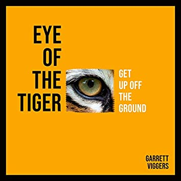 Eye of the Tiger (Get Up Off the Ground)