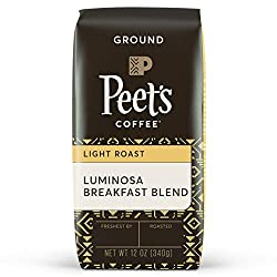 best light roast coffee beans