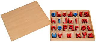 Kid Advance Montessori Small Movable Alphabets w/ Box