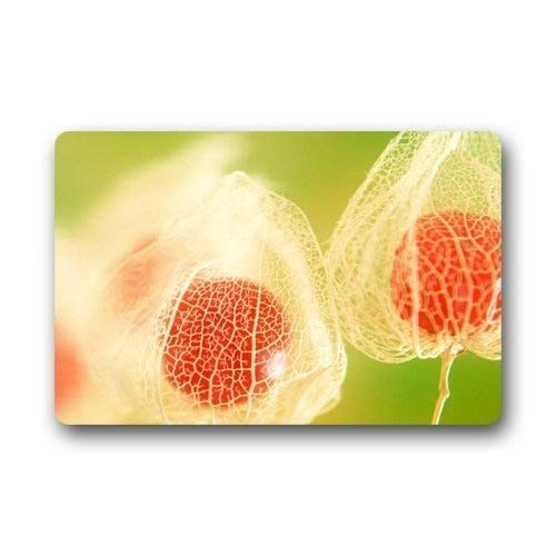 Plantas Flores exóticas Entradas rectangulares Alfombrilla antideslizante Alfombra de piso 40Cm * 60Cm