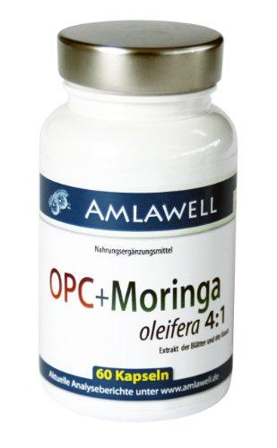Amlawell OPC & Moringa / 60 Cellulose-Kapseln / 240mg OPC / 2-Monats-Pack!