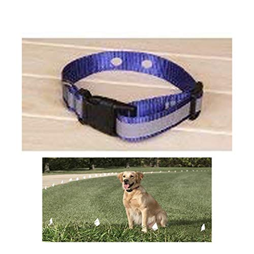 """Sparky Pet Co Invisible Fence Compatible Reflective Blue Dog Collars 3/4"""" Replacement Dog Collar for Systems That Have 2 Holes 1 5/8"""" Apart"""