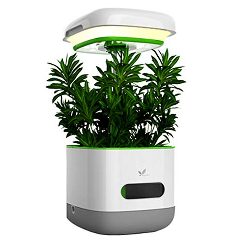 Jardín Interior Hidropónico Inteligente, Sistema De Jardinería Interior con Función De Lámpara LED De Escritorio Planta De Cultivo Ligero Mini Cultivo Hidropónico Interior