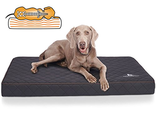 Knuffelwuff Orthopädische Hundematte Juna Hundebett aus laser gestepptem Kunstleder waschbar Hunde ortho orthopädisch memory XXXL 136x84cm Schwarz Übergröße für große Hunde