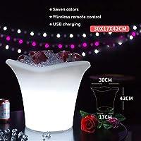 アイスバケツ LED発光アイスバケツ屋外の携帯用アイスバケツ屋外防水家庭用赤ワインシャンパンビールバレルクーラー パーティー、バー、ホームバーのために (Color : 30x17x42cm)