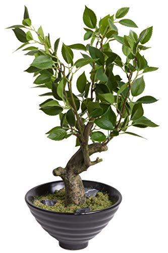 Flora-Seta GmbH künstlicher Bonsai in schwarzer Keramikschale (Ficus)