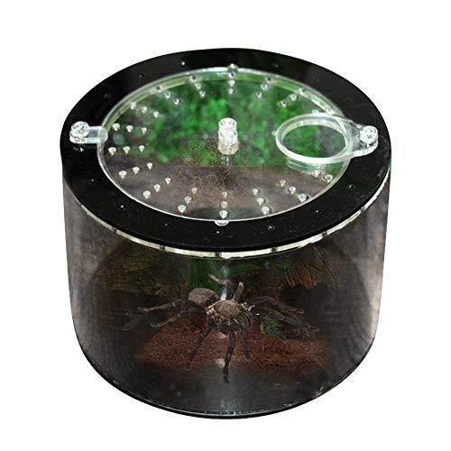 Aniceday - Caja de reptiles para reptiles (acrílico), transparente
