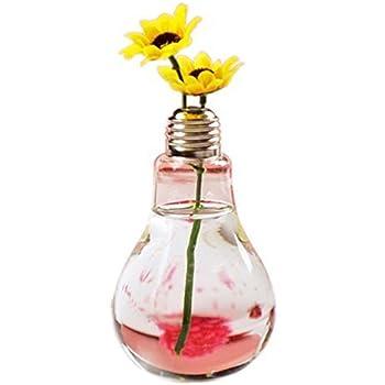 Lot de 2 Vase de Table en Verre Transparent Forme de lAmpoule pour Plantes Fleurs D/écoration