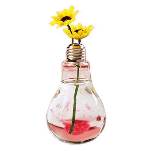 Daorier - Vaso a lampadina in vetro trasparente per piante, fiori, decorazione creativa, idea regalo, 1 pz., Vetro, 1PCS, 8*8*14