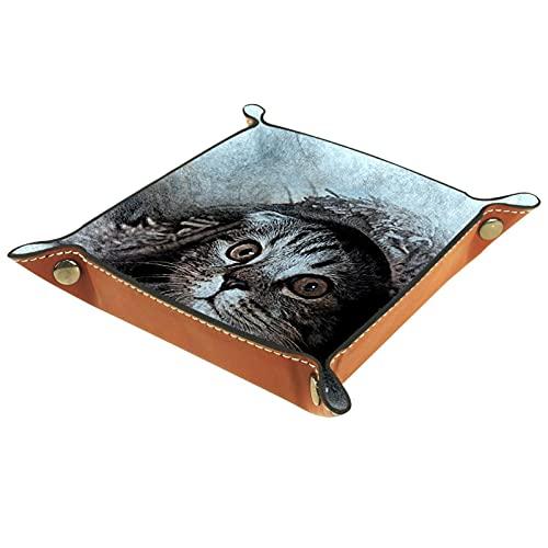 Organizador de escritorio de la bandeja del colector de la bandeja del valet para las mujeres de los hombres Bandeja de la llave para la moneda de la mesa gato escondido en la cama for Office home