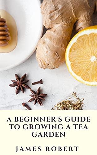 A Beginner's Guide To Growing A Tea Garden: Easy Tea Garden Plants To Grow For Your Very Own Tea Garden