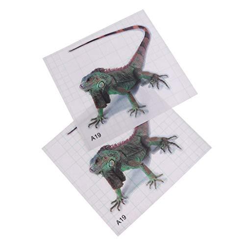 B Blesiya 2 Stück PVC Transparent Aufkleber Sticker Tattoo Terrarium Hintergrund Wand Dekoration - Grüner Leguan