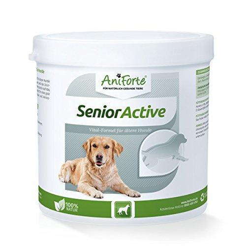 AniForte Senior Active Pulver 250 g für ältere Hunde - Grünlippmuschel & Hagebutte, unterstützt Gedächtnis- & Herzfunktion, Vitalität & Agilität, Vitamine, Mineralien & Aminosäuren, Senioren Futter