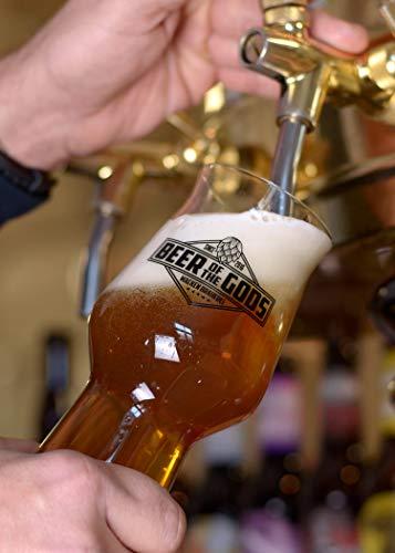WACKEN BRAUEREI Double India Pale Ale Craft Beer Box 6 x 0,33 l Flasche | TYR | Viking Craftbeer Set Gift for Men | Wikinger Kraft Bier Geschenk für Männer | Party Festival Heavy Metal - 4