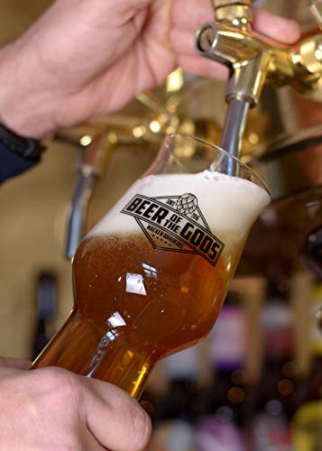 WACKEN BRAUEREI Craft Beer Box 14 x 0,33 l verschiedene Sorten + Bierglas BEER OF THE GODS | GÖTTERGABE | Viking Craftbeer Set Gift for Men | Wikinger Kraft Bier Geschenk für Männer | Party Festival - 7