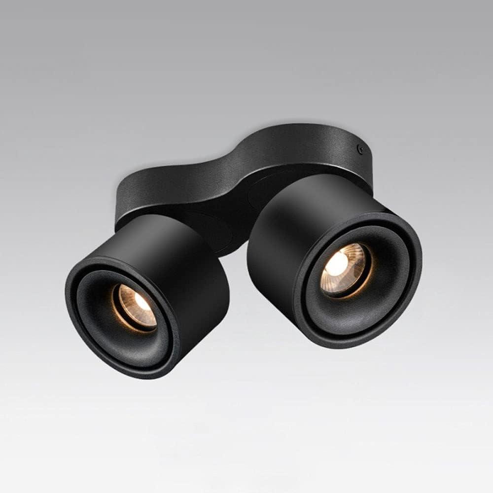 Siet Max 52% OFF LED Award-winning store Ceiling Spotlight Directional Tracking 2-Light Fixture