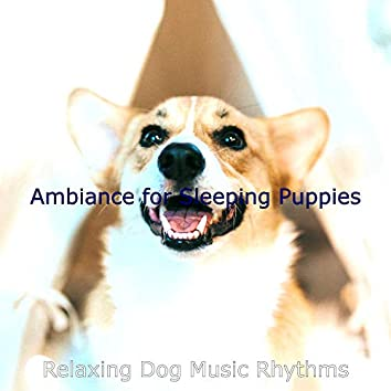Ambiance for Sleeping Puppies