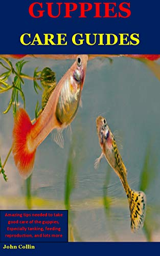 Guppies Care Guides: Amazing Tips Needed To Take Good Care Of The Guppies, Especially Tanking, Feeding Reproduction, And Lots More (English Edition)