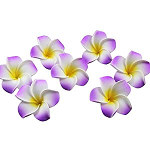 Ewanda store 100 Pcs Diameter 2.4 Inch Artificial Plumeria Rubra Hawaiian Foam Frangipani Flower Petals for Weddings Party Decoration(Purple)