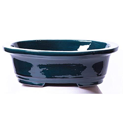 Alfareros Damian Canovas Maceta para Bonsai DE Barro Y ESMALTADA EN Color Azul RABEL.Mod. Osaka. Medidas 25X20X7CM.con TU Compra TE REGALAMOS EL Plato.