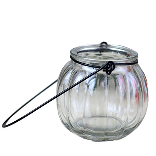 outflower citrouille vase hidropónico poisson Terrarium Pot colgantes-transparente 7.5*7cm transparent