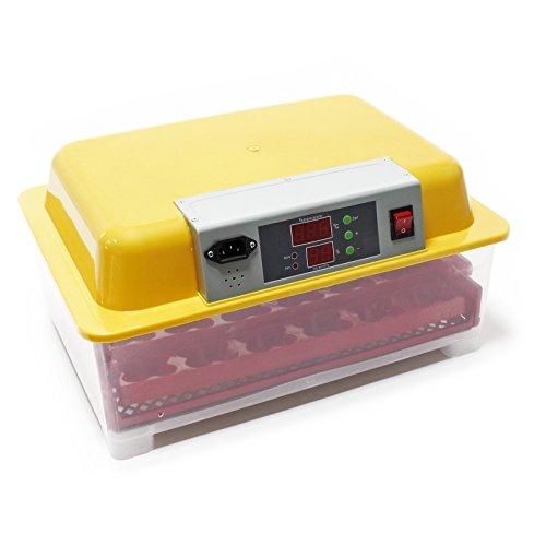 WilTec Incubadora automática Capacidad para 24 Huevos, Incubación Cr