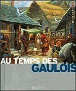 Les Gaulois - Des invasions celtiques à l'occupation romaine de Louis-René Nougier