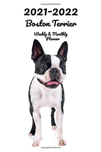 2021-2022 Boston Terrier Weekly & Monthly Planner: 2-Year Pocket Calendar | 26 Months | 152 pages 6x9 in. | Diary | Organizer | Agenda | Appointment | For Dog Lovers