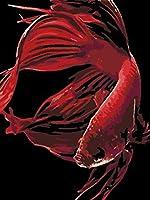 子供のための数字によるペイントキット赤い動物の鯉40X50Cmフレームなしのキャンバス3つのブラシでのための数字によるペイント