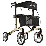 OasisSpace Aluminum Rollator Walker, with 10'' Wheels and Seat Compact Folding Design Lightweight Baking Complimentary Carry Bag (Champagne)