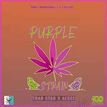 Purple Strain