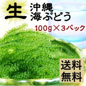 生海ぶどう100g×3パックセット【鮮度抜群】専用タレ付 !