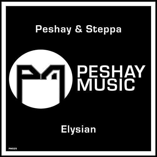 Peshay & Steppa