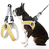 Gooby Dog Harness - Yellow, Medium - Simple Step-in Harness III Small Dog Harness Scratch Resistant - On The Go Breathable Inner Mesh Harness for Small Dogs or Cat Harness for Indoor and Outdoor Use