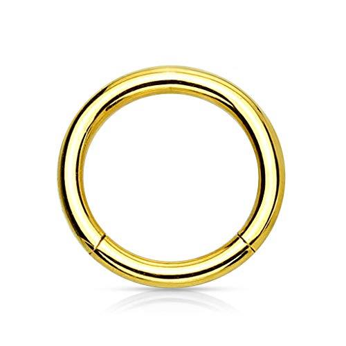 Trend Agent Piercing Ring Septum Clicker SEGMENTRING Nasenring Damen Herren SCHMUCK Chirurgenstahl Ohrring 1.2 x 8mm Gold - vergoldet