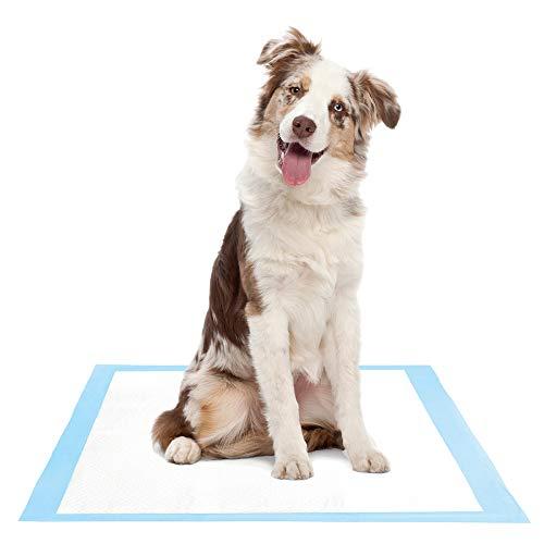 Super Absorbent Puppy Pad