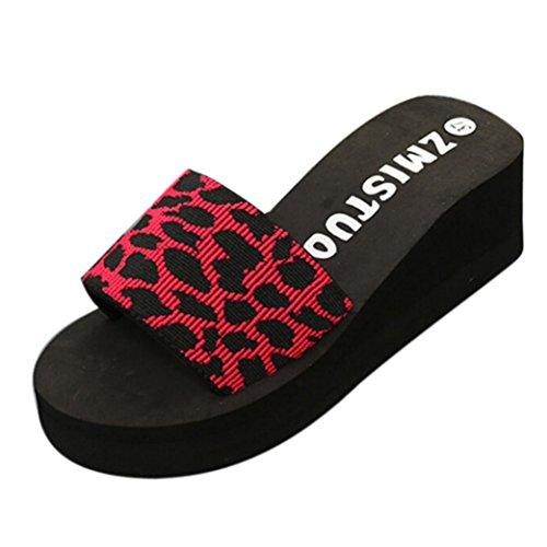 PAOLIAN Sandalias y Chanclas para Mujer Verano 2018 Zapatos de Plataforma Cuña Playa Chanclas con Paño Elástico Patrón de Leopardo Open Toe Suela Blanda Antideslizante Chanclas De Damas (39, Rojo)