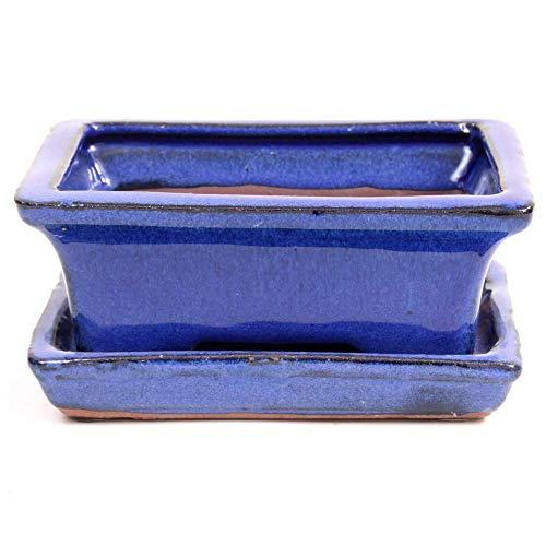 Bonsai - Schale eckig, 16 x 12,5 x 6 cm, blau, mit Untersetzer 23950