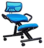 Wizard + Genius Office Chair Orthopedic Stool Posture Frame Memory Foam Adjustable seat with armrests and backrest (Color : C)
