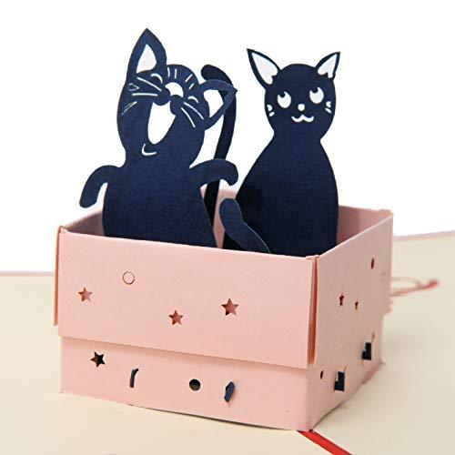 Favour Pop Up Glückwunschkarte zum Geburtstag mit fröhlichen dreidimensionalen Katzenmotiven Format 12x17cm TB016