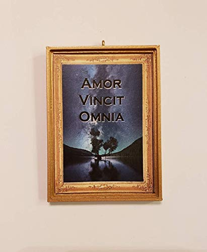 Amor Vincit Omnia Love Conquers All Latin Gift Night Sky Scene Romantic * Dollhouse Miniature - Without a Bail