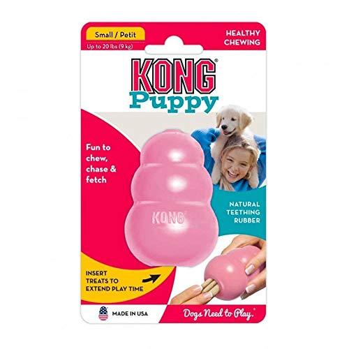 KONG – Puppy Zahnungshilfe aus Kautschuk – Kauen, Jagen, Apportieren – Für Kleine Welpen (Farbvar.)
