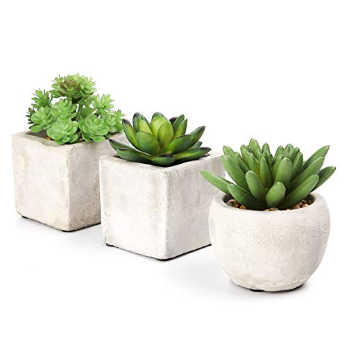 ANSUG 3 Piezas de Plantas suculentas Artificiales, Mini bonsái de Plantas Artificiales con Maceta de Cemento, Uso repetido y Estilo Moderno, para decoración de Mesa, hogar, balcón, Oficina