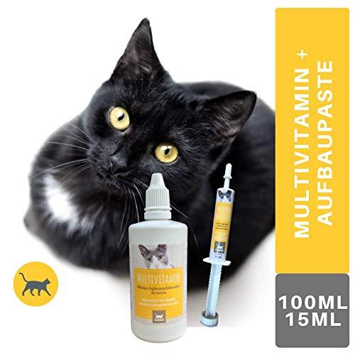 EMMA® Multi Vitamin B Komplex Katze (B1 B2 B6 B12) I Vitamine A, D3, E und Mineralien I Kalcium, Folsäure, Eisen, Zink I Immunsystem stärken I Barf Zusatz 100 ml + 1 Vitaminpaste Welpen